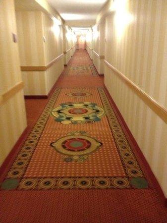 DoubleTree by Hilton Hotel Atlanta - Marietta: Add a captiondouble yuck ;)