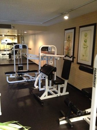 DoubleTree by Hilton Hotel Atlanta - Marietta: weight machines in fitness center