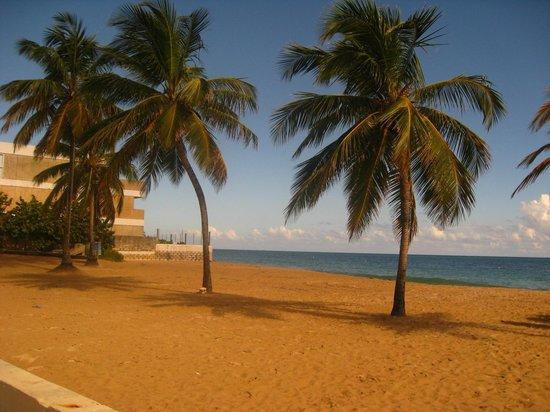 写真Ocean Park Beach枚