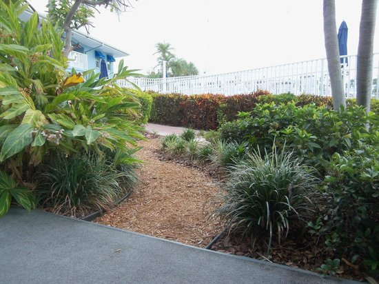 Sea Captain Resort on the Bay: Pathway with fountain