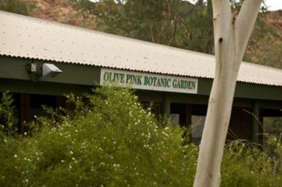 Olive Pink Gardens Cafe