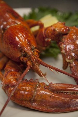 Deck House : We serve Whole Maine Lobster here almost daily!