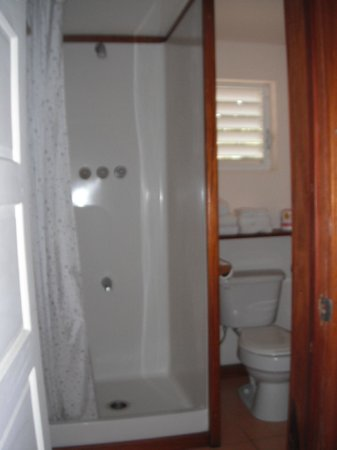 One World Rentals: bathroom - dolphin room