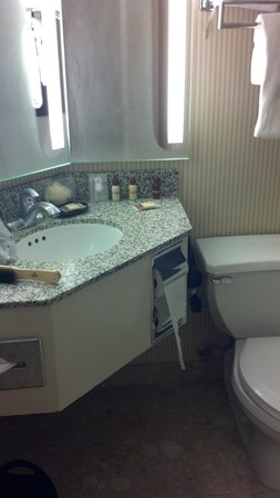 Sheraton Palo Alto Hotel: Bathroom