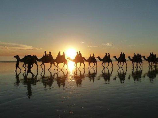 Ships of the Desert : Sunset tour