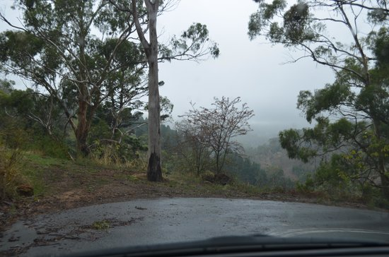 Black Hill Conservation Park: winding road