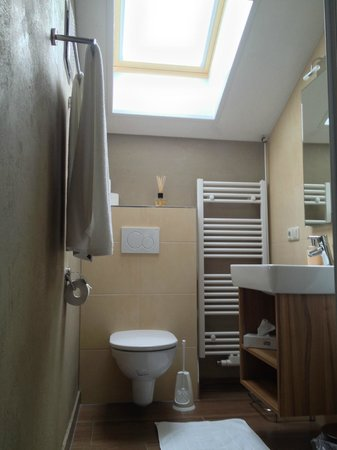 Pension Mühle: The bathroom with sun roof