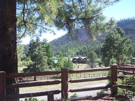 The Greer Peaks Lodge: Love it here.