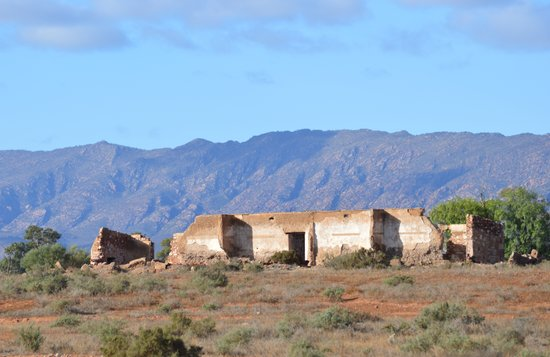 Flinders Ranges Caravan Park: Just minutes away are some wonderful historical ruins, with the majestic Flinders Ranges as a wo