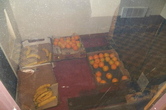 Super 8 Rockford: Fruit at bottom of elevator shaft.