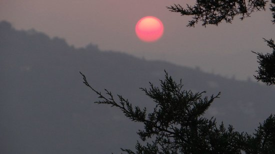 Trishul Orchard Resort: Sunset view from the terrace