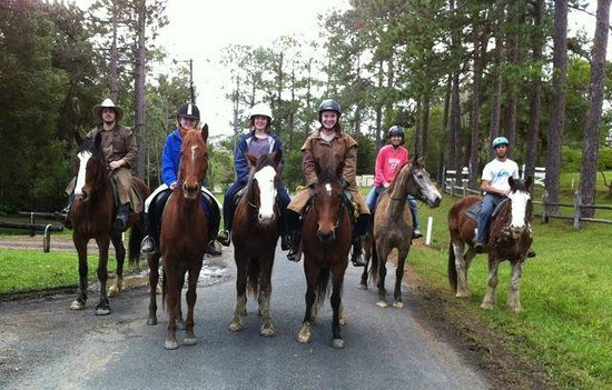 Mooloolah Valley Holiday Houses: happy horse riding days