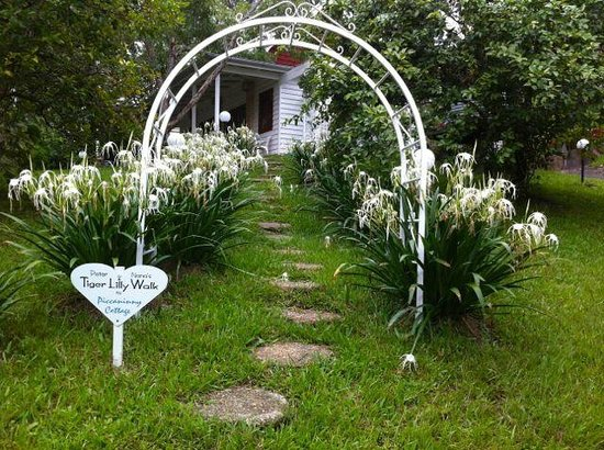 Mooloolah Valley Holiday Houses: Tiger Lilly Walk