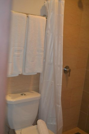Fersal Hotel - Puerto Princesa: Bathroom