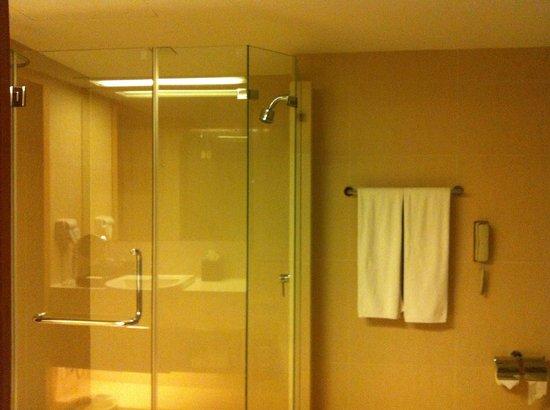Sivatel Bangkok: standing shower