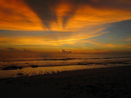 Lanta Miami Bungalows: More 630 sunset