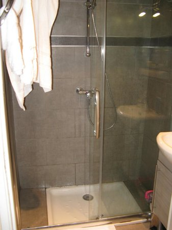 Hotel Bellevue : Seperate shower with only cold water as heating broken
