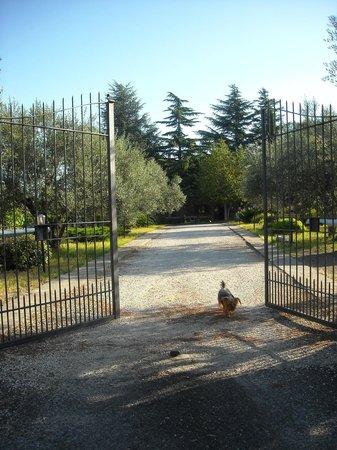 Le Pozze: cancello