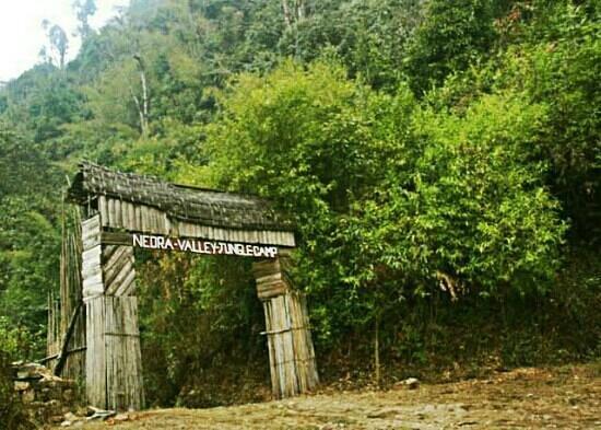 Darjeeling District, Индия: Neora Valley Nationsl Park