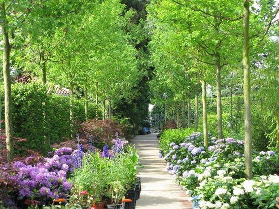 Koenigliche Gartenakademie