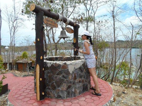 Grace Island: wishing well