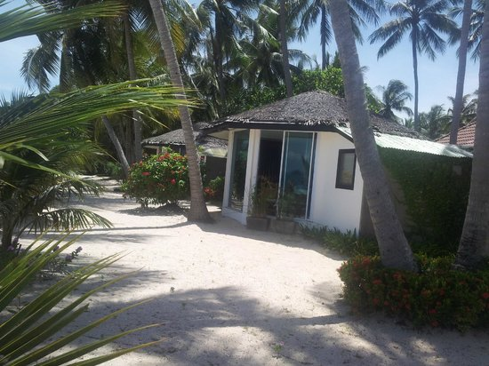 Am Samui Resort: Other bungalow