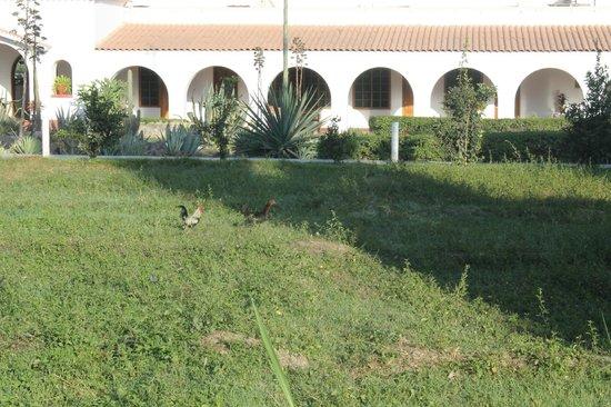 Hotel Nuevo Cantalloc: Esterno dell'hotel