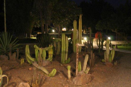Hotel Nuevo Cantalloc: Una paerte del giardino