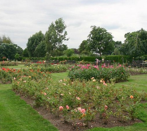 Westcliff-on-Sea, UK: Rose Garden