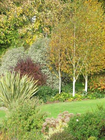 Broadhempston, UK: autumn colours
