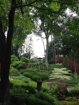 Museums of the Far East : Japanese garden