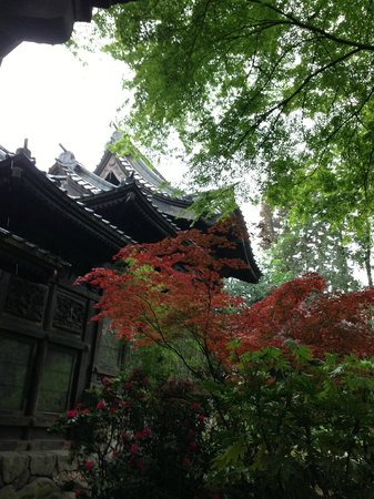 Museums of the Far East : Japanese Tour