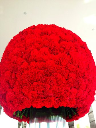 The Oberoi, Gurgaon : Floral topiary in the lobby--stunning.