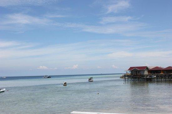 Derawan Dive Resort : view