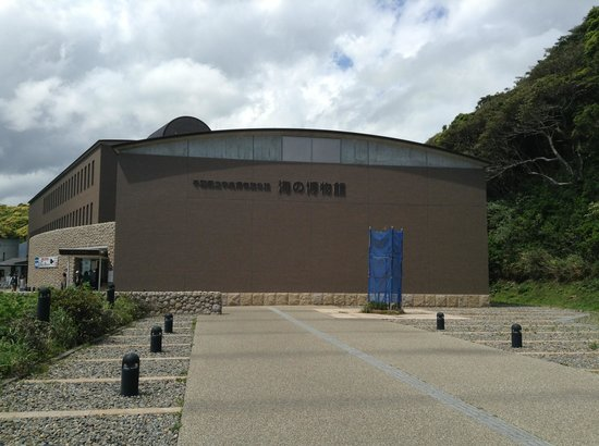 Coastal Branch of Natural History Museum and Institute Chiba