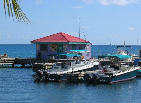 Leverick Bay Resort: Puerto del Resort.