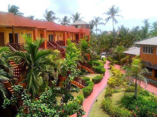 VIK Hotel Cayena Beach : resort