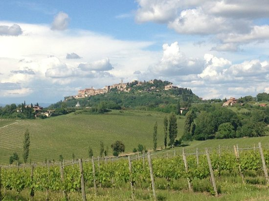Villa San Bartolomeo: View of montepulciano