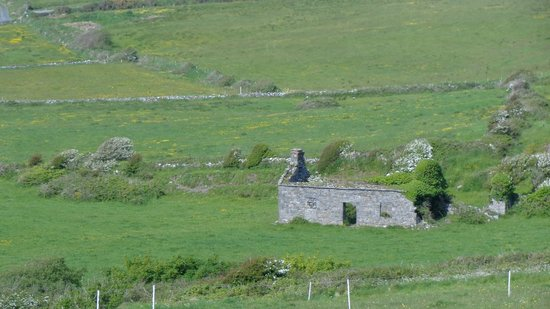 Atlantic View Cottages : On our walk into Doolin from the cottage