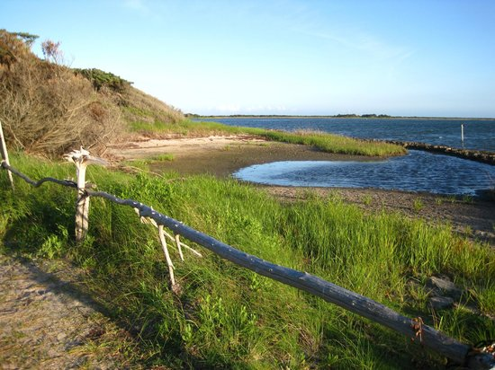 Springer's Point Preserve : View of Pamlico Sound