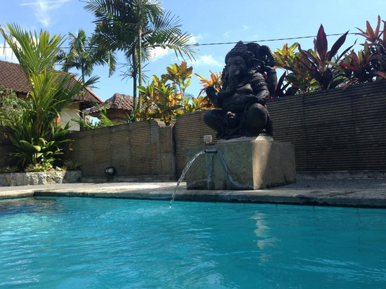 Bali Breeze Bungalows: pool angel