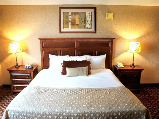 Ramada Topeka Downtown Hotel and Convention Center: Standard King Guestroom
