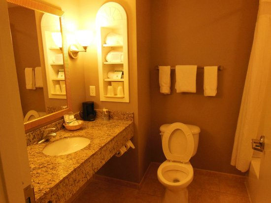 Holiday Inn Express Hotel & Suites Palatka Northwest: Bathroom