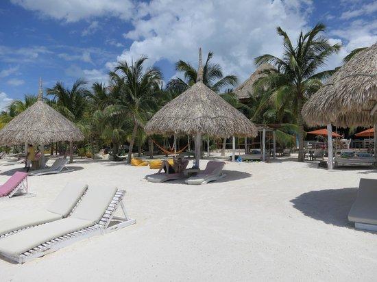 Holbox Hotel Casa las Tortugas - Petit Beach Hotel & Spa: Beach