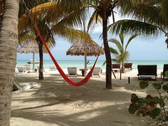 Holbox Hotel Casa las Tortugas - Petit Beach Hotel & Spa: Hammocks