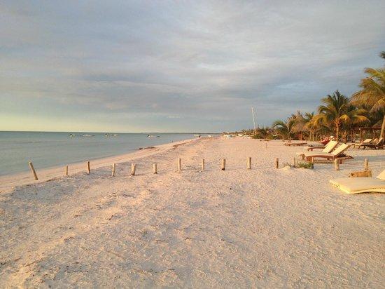 Holbox Hotel Casa las Tortugas - Petit Beach Hotel & Spa: View down the beach