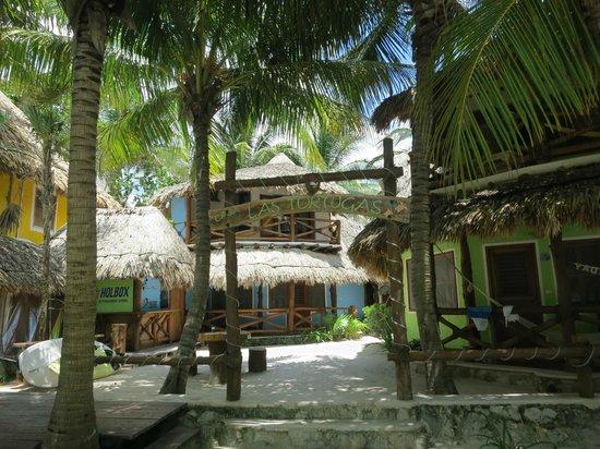 Holbox Hotel Casa las Tortugas - Petit Beach Hotel & Spa: View of Colibri room