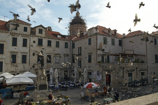 The Pucic Palace: main square location