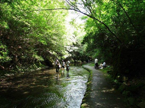 Takkiri Valley