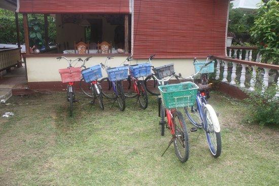 Citronnelle Guest House: Le bici col cestino